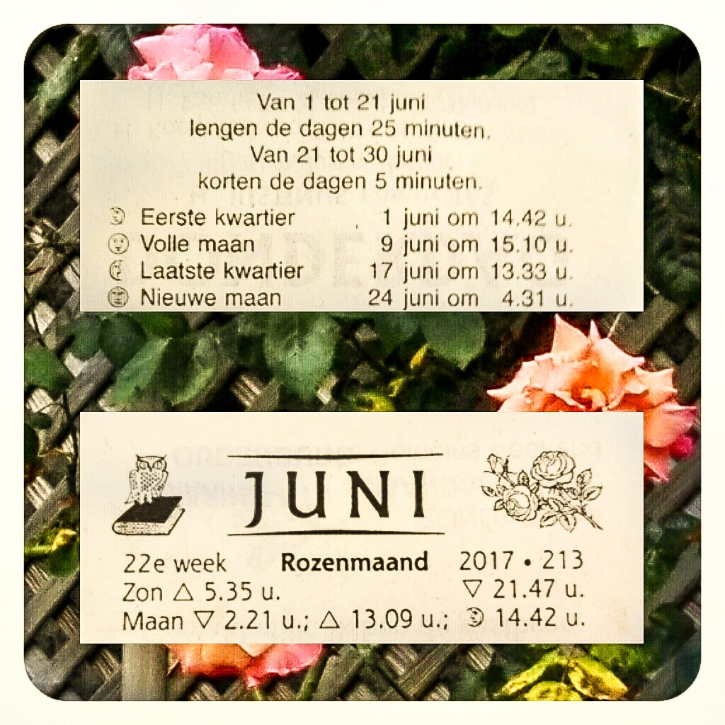 rozenmaand